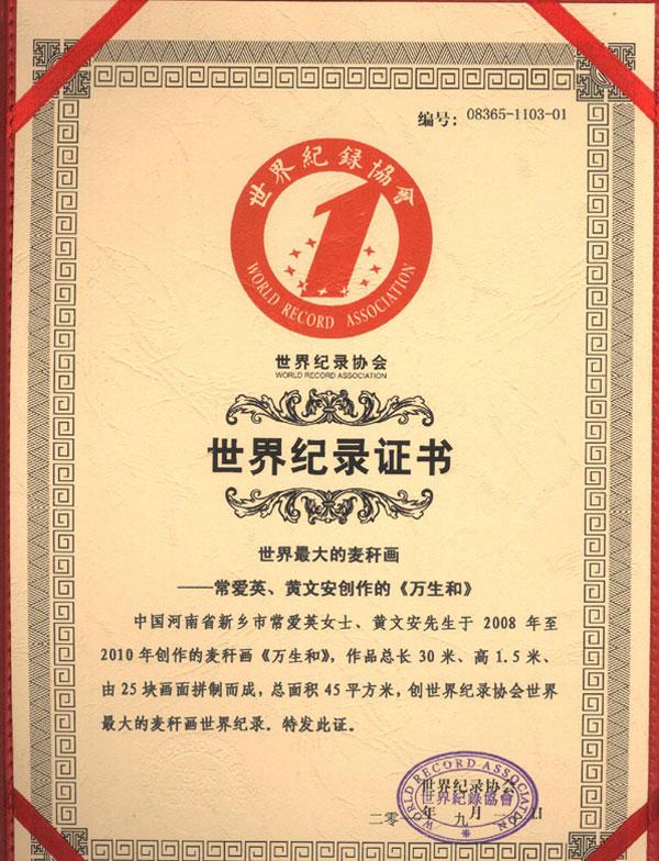 世界记录证书